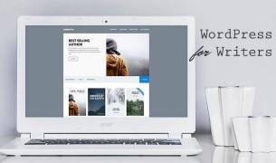 Несколько способов узнать тему сайта на WordPress