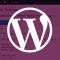 Описание тонкостей по выводу миниатюры записи wordpress
