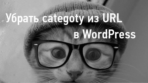 ubrat-category-iz-url-wordpress