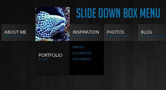 slidedownbox