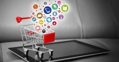 Описание и особенности плагина e-Commerce для WordPress